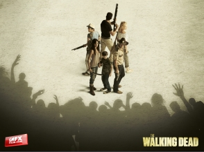 The-Walking-Dead-the-walking-dead-25862323-1600-1200