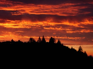 Sunrise at Riebli Point Ranch