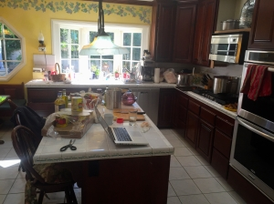 Phyllis's kitchen during the process